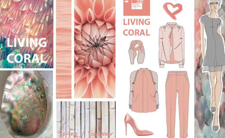 A fashion design colour mood board
